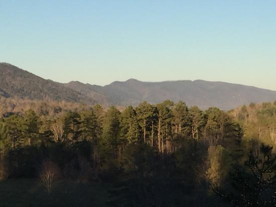 Walland, TN: Back porch View