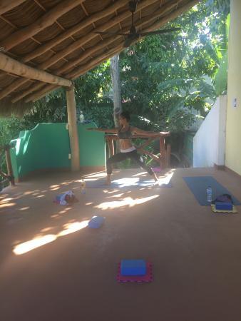 Paraiso Yoga: Yoga in the jungle