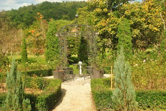 Canary Natural Resort: Garden