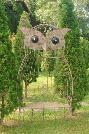 Canary Natural Resort: Owl deco