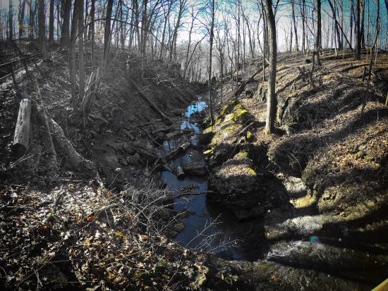 Clifty Falls State Park: Creek