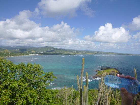Maria Islands Nature Reserve: View from Maria Island