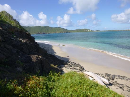 Maria Islands Nature Reserve: The nice beach on Maria Island