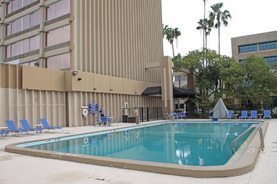 The Barrymore Hotel Tampa Riverwalk - UPDATED 2017 Prices & Reviews (FL) - TripAdvisor