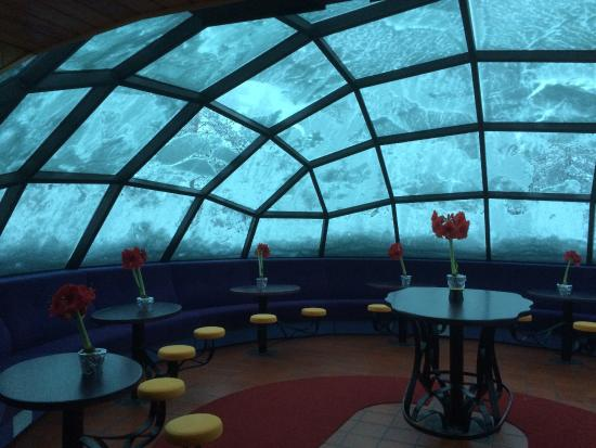 igloo bar picture of kakslauttanen arctic resort saariselka tripadvisor. Black Bedroom Furniture Sets. Home Design Ideas