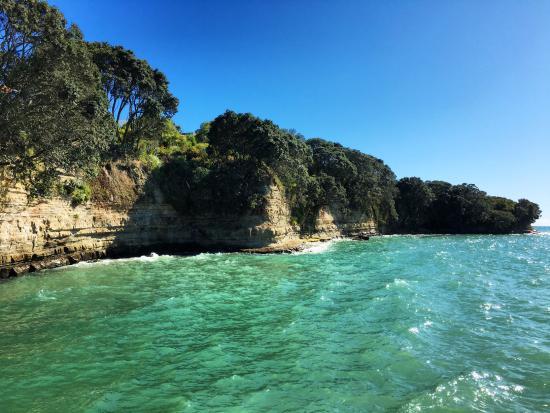 Murrays Bay, Neuseeland: Amazingly beautiful water