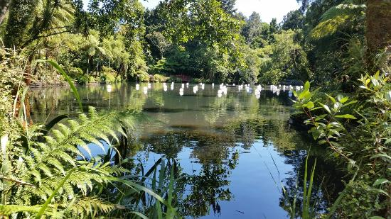 New Plymouth, New Zealand: Pukekura Park
