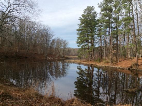 Chesterfield, VA: Beaver Lake Trail