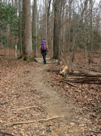 Chesterfield, VA: Hiking