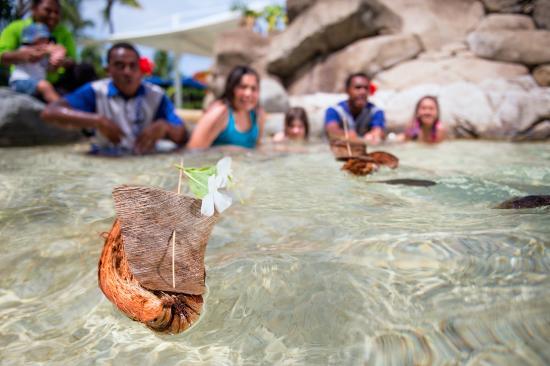 Radisson Blu Resort Fiji Denarau Island: Kids Koro Coconut Husk Boat Race