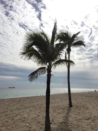 Sea Club Resort: photo0.jpg