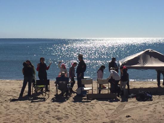 Bahia Kino, Mexico: Perfecto lugar para acampar por el día, llevas tus sillas, sombra, musica, hielera y todo lo que