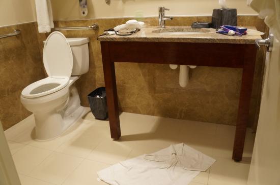 Holiday Inn L.I. City - Manhattan View: banheiro grande