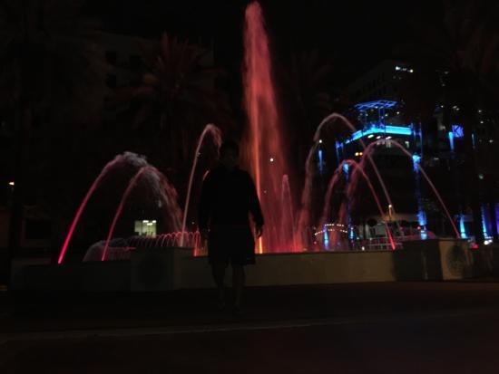 Riverwalk Fort Lauderdale: Awesome