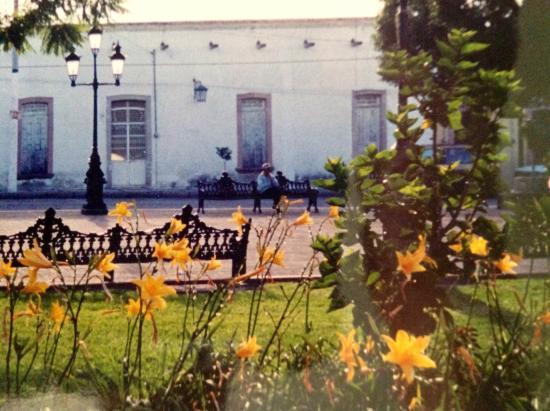 Union de San Antonio, المكسيك: Una casa frente al jardín