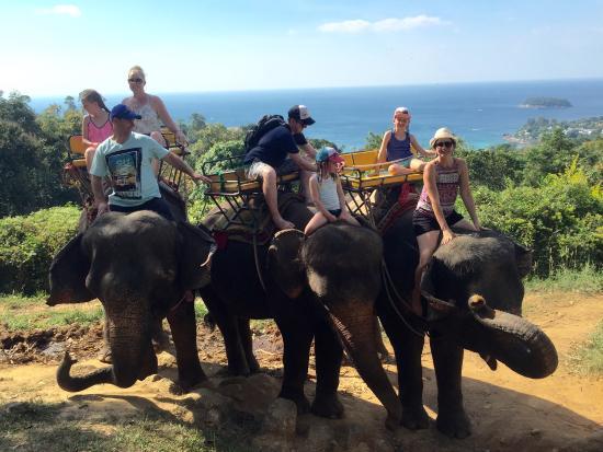 Kok Chang Safari Elephant Trekking: Fantastic Elephant trek with Elephants treated very well