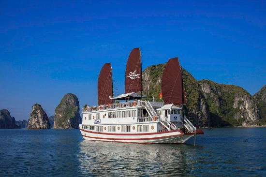 Lavender Cruise Halong - Day Tour