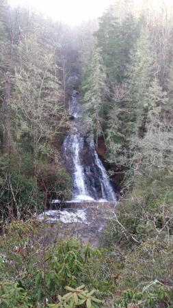 Connestee Falls : A view of the falls