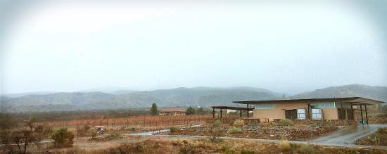 Southwest Wine Center