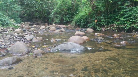 Adventures in Paradise Fiji: image-0a3f460b0f2462e3894f3cba1beaca3499061568e9f3ff9d53fd3c54aefd42a9-V_large.jpg