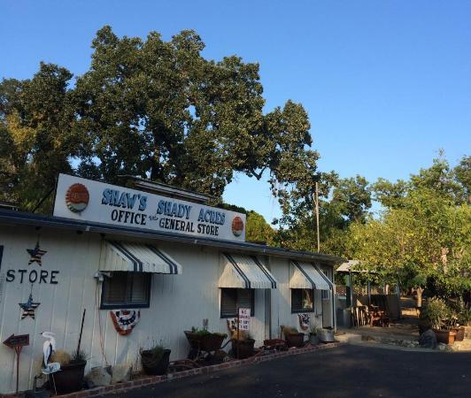 Clearlake, CA: Shady Acres Campground General Store