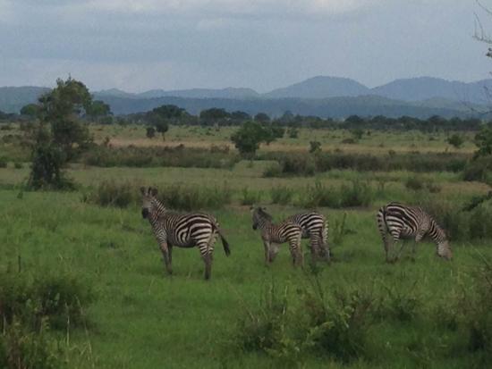 Morogoro, Τανζανία: photo7.jpg