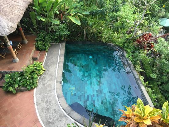 Villa Awang Awang: Villa Beji Private Pool