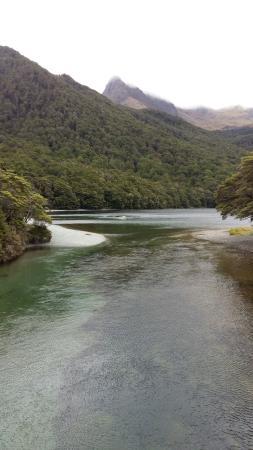 Fiordland National Park, Nueva Zelanda: 20160113_134910_large.jpg