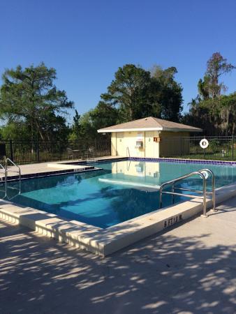 Royal Celebration Inn on Lake Cecile : pool