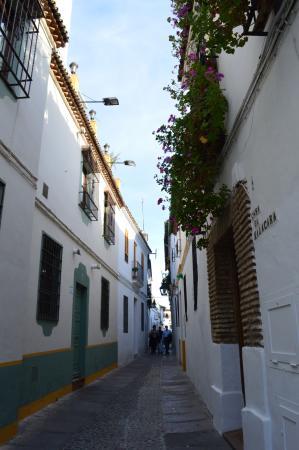 Jewish Quarter (Juderia): Calle de la Judería