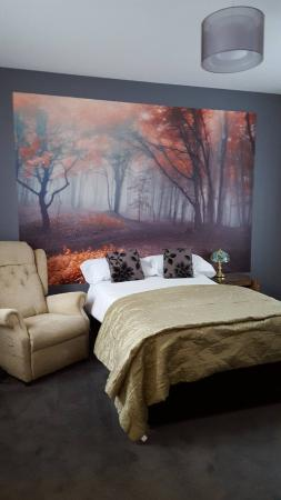 Cinderford, UK: B&B bedroom