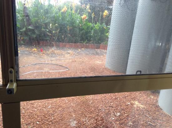 Ibis Styles Albany: noisy, ugly  heating cylinders through broken window