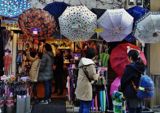 Kamakura Komachidori : 傘専門店