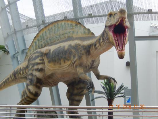 Dino Greeting At Entrance Fotograf A De South Florida