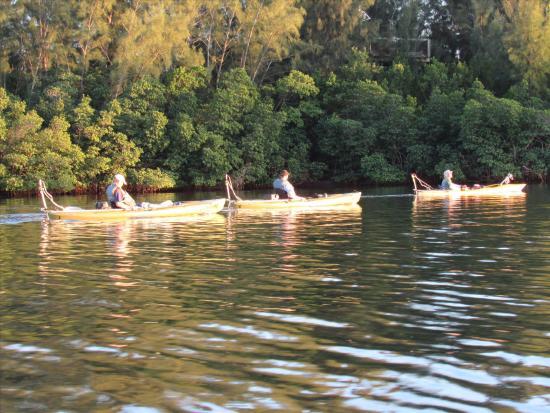 Kayaking the Indian River - Picture of Motorized Kayak