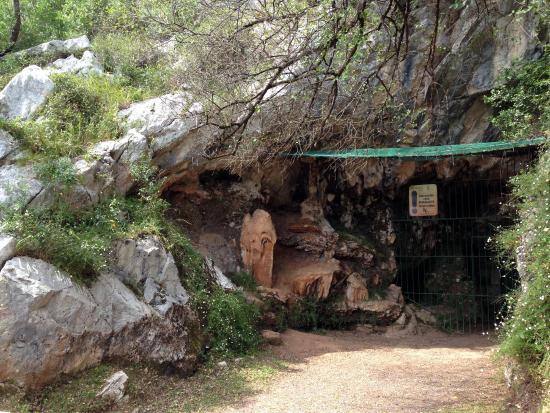 la entrada a la pasiega - Picture of Cave of El Castillo, Puente Viesgo - Tri...