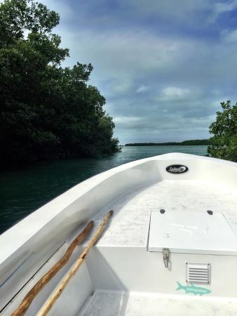 El Pescador Resort: photo6.jpg