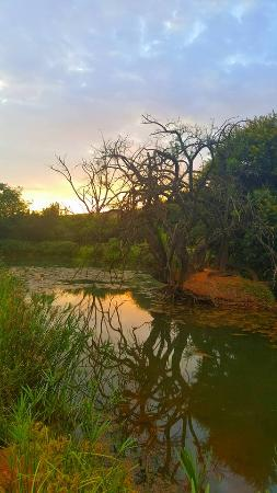 Budmarsh Country Lodge: @ oeace at sunrise
