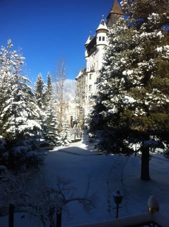 Hotel Steinbock: Blick in den Garten zum Hotel Walther