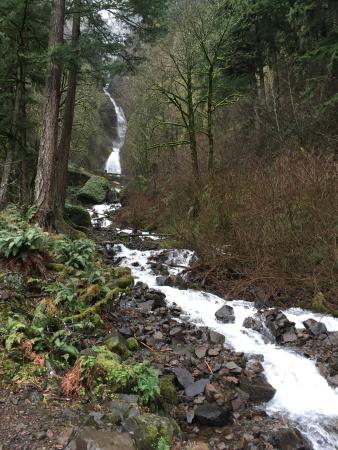 Columbia River Gorge: one of many spectacular sites