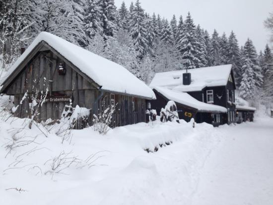 Sankt Andreasberg, Alemania: Restaurant mit Wildtierfütterung