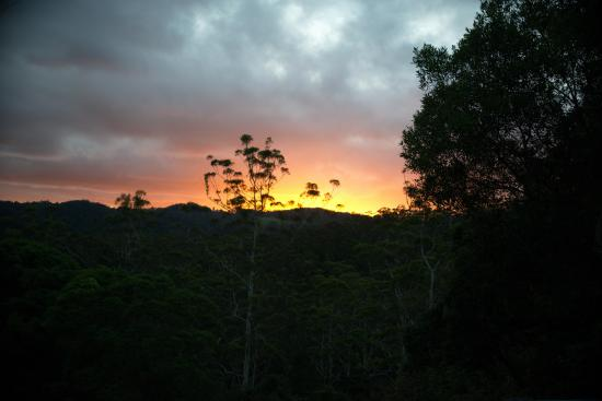 Montville Grove: Sunrise over Lake Baroom