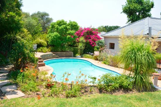 Cape Valley Manor: Pool