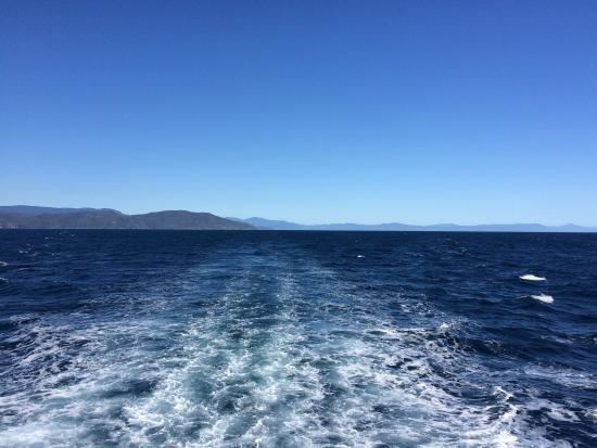 Pro Dive Cairns Day Trips: photo0.jpg