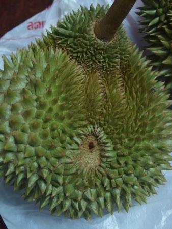 Suan Paiboon