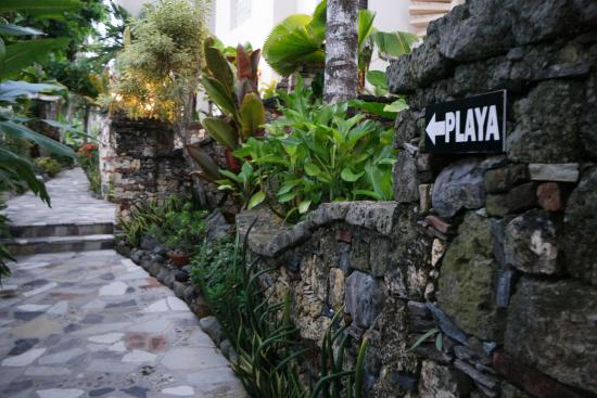 Hotel El Magnifico: Path behind building 4 that goes to the beach.