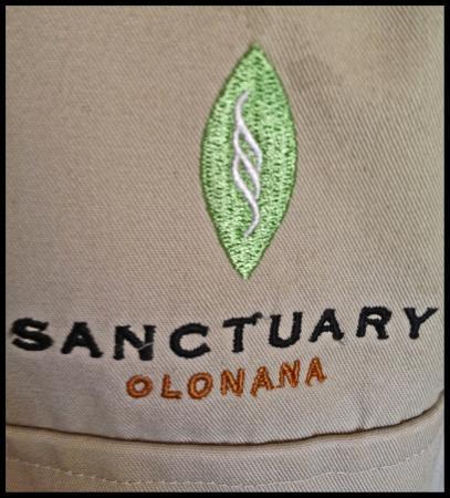 Sanctuary Olonana: photo0.jpg
