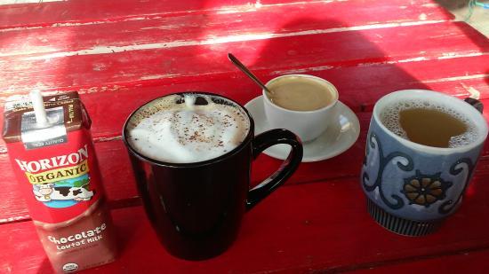 Otherlands Coffee Bar: Organic choc milk, Mocha, Doppio, and hot apple cider
