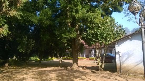 Kotagiri, อินเดีย: Loved the greenery