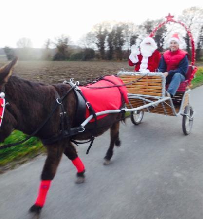Jarze, France: Noël à la ferme